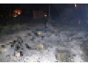 Manavgat yangınında içleri yakan görüntü