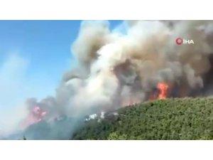 Lübnan'da orman yangını: 2 ölü, 23 yaralı