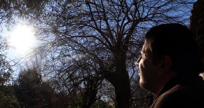 Romazitizma hastası güneşi görmek için 17 yıl bekledi