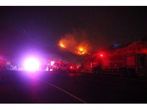 Bodrum'da sarp arazide çıkan yangın söndürüldü