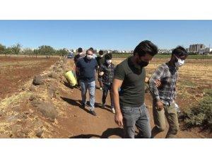 Siverek'te 17 düzensiz göçmen yakalandı