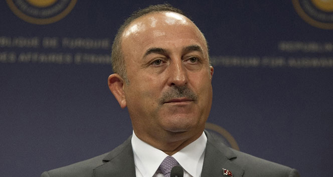 Bakan Çevuşoğlu Paris'te