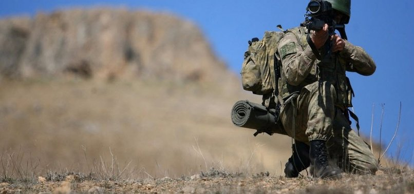 Ağrı'da operasyon: 2 terörist etkisiz hale getirildi