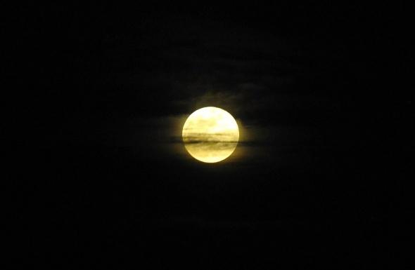 Adı gibi süper Mavi Ay