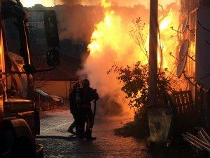 Sakarya'da çıkan yangın 3 saatte kontrol altına alındı
