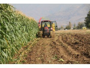 """Tarım ve Orman Bakanlığı: """"Hasat sezonu ithalat yapılması söz konusu değil"""""""