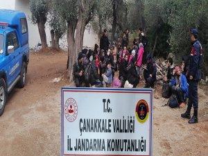 Çanakkale'de 201 mülteci yakalandı