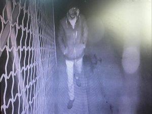 Muhtarı vuran şahsı güvenlik kamerası görüntüledi