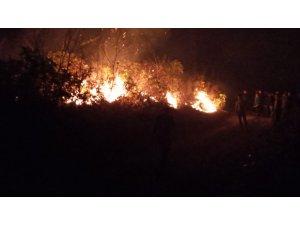 Trabzon'un Dernekpazarı ilçesi Akköse mahallesinde de yeni örtü yangını başladı