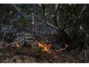 Giresun'da çıkan 15 örtü yangınının 5'inin insan kaynaklı olduğu belirlendi
