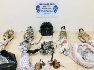 Yırtıcı kuş kaçakçıları suçüstü yakalandı