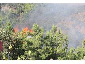 Hatay'daki orman yangınında olay yeriyle ilgili yeni görüntüler