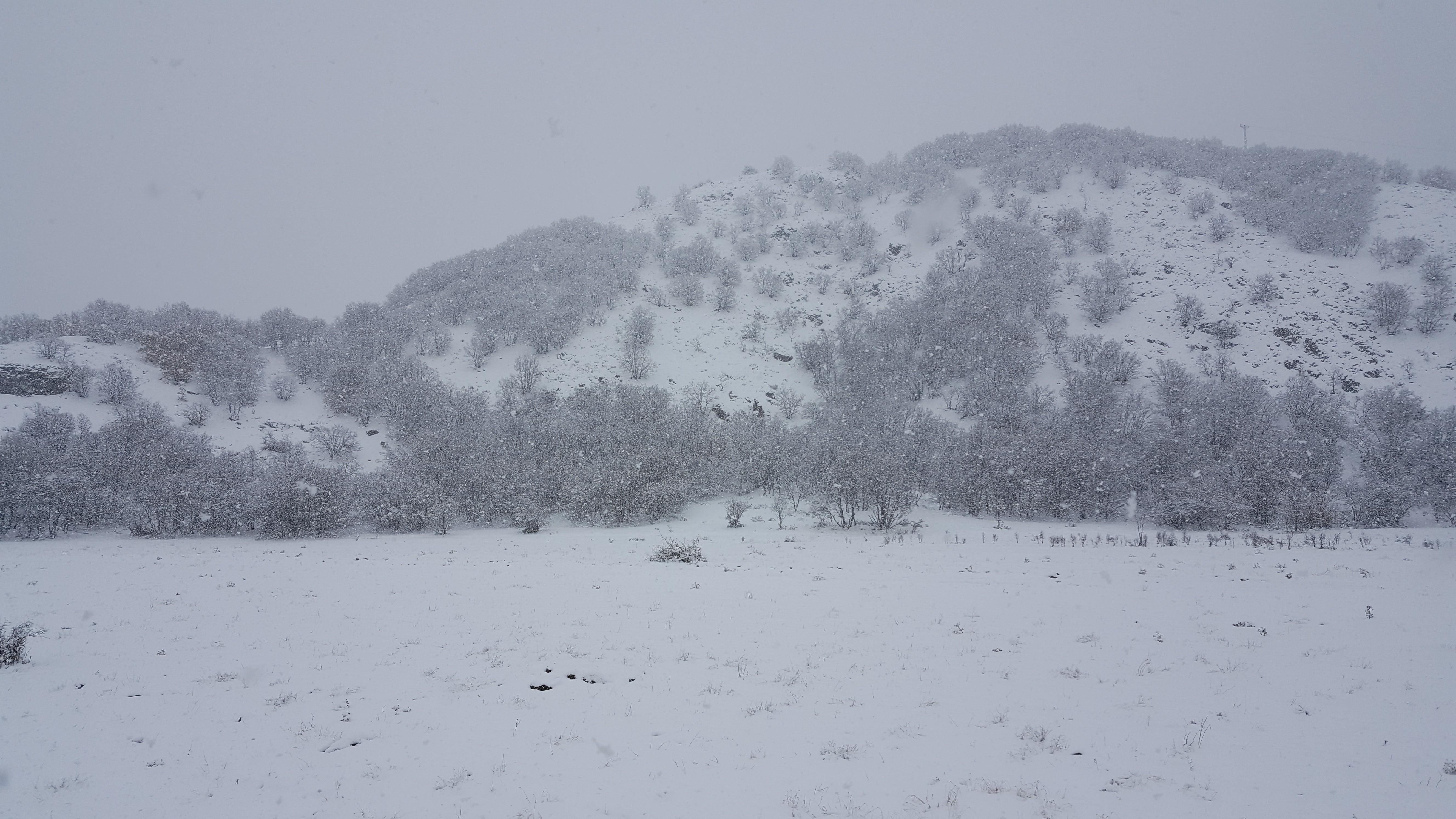 Ağrı'da kar yağışı bekleniyor!