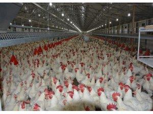 Beyaz et sektörü Japonya ve Çin'den sonra gözünü AB pazarına dikti
