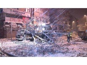 kagithane de yogun kar yagisi nedeniyle yol kenarindaki agac devrildi