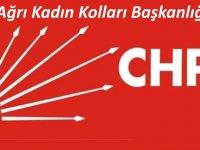 CHP Ağrı Kadın Kolları Başkanı Aydın'dan 8 Mart Dünya kadınlar günü mesajı