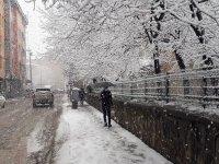 Ağrı'da kar kenti etkisi altına aldı
