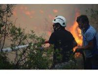 İstanbul Üniversitesi-Cerrahpaşa orman yangınları hakkındaki ön değerlendirme raporunu açıkladı