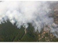 Muğla'da yangınla mücadele hız kesmeden sürüyor