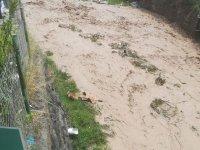 Ot Toplamaya Giden Anne Ve İki Çocuğu Sel Sularına Kapıldı