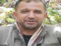 4 milyon TL ödülle aranan terörist Bitlis'te etkisiz hale getirildi