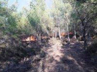 Orman yangınını söndürmek için köylüler seferber oldu