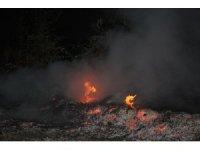 Anında müdahale ormanı yanmaktan kurtardı