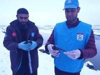 Ağrı'da donmak üzere olan kargaları yardım ekibi kurtardı