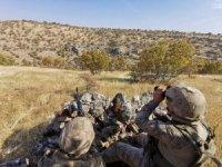 Mardin'de terör örgütününe şafak vakti operasyon