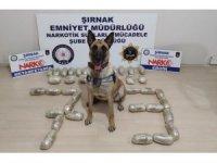 Şırnak'ta 16 kilogram eroin ele geçirildi