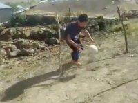 Köy okulu öğrencileri köyde parkur kurdu