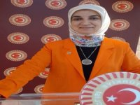 "AK Parti Milletvekili Gürel'den ""Baro"" açıklaması"