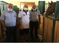 Hikmet Karaman'dan şampiyon ata ziyaret