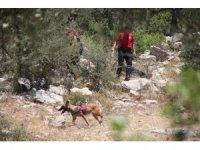Köpeğin getirdiği insan kafatası polisi alarma geçirdi