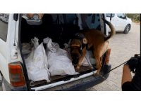 Van polisi kamyonete 102 kilo eroin ele geçirdi