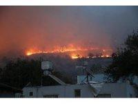 Yayladağı'ndaki orman yangınına 1 tutuklama