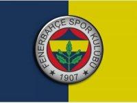 Fenerbahçe'nin yeni transferi sakatlandı!