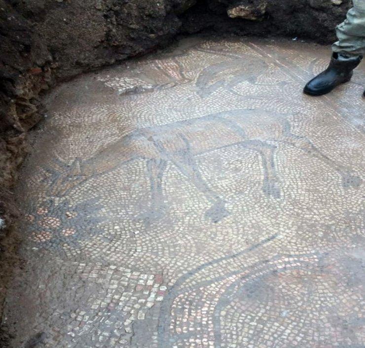 Mardin'de 1500 yıllık mozaik, kaçak kazıda ortaya çıktı