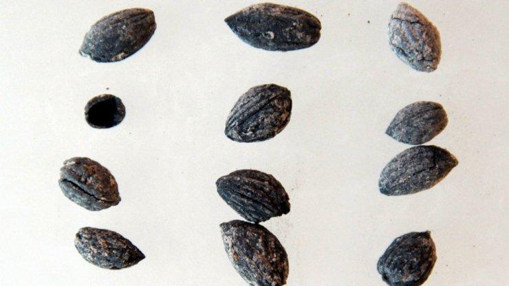 Kilis'te bulundu: 4 bin yıl öncesine ait