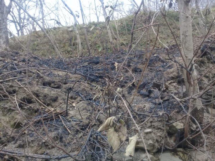 Yangının bilançosu gün ağırınca ortaya çıktı