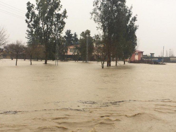 Ceyhan'da bazı köyler ekili alanlar sular altında