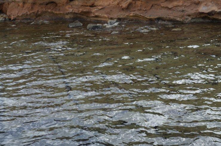 Didim'de deniz altında binlerce yıllık kalıntı heyecanı