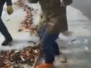 Ağrı'da balık tutan vatandaşların sevinci kameraya yansıdı