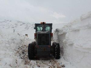 Ağrı'daki Köy Yolları Açıldı